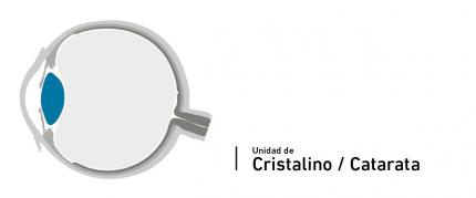 Crystalline Lens (Cataract) Unit